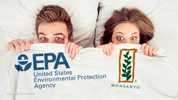 Image result for EPA & pesticides & health & science